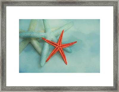 Ocean Treasures Framed Print by Jai Johnson
