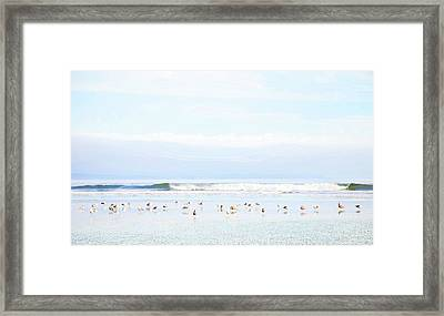 Ocean View With Seagulls Framed Print by Theresa Tahara