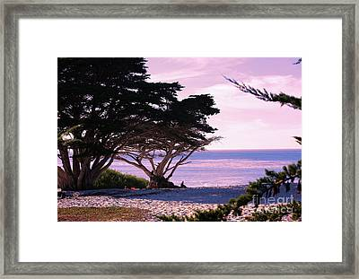 Ocean Views From Carmel Beach  Framed Print