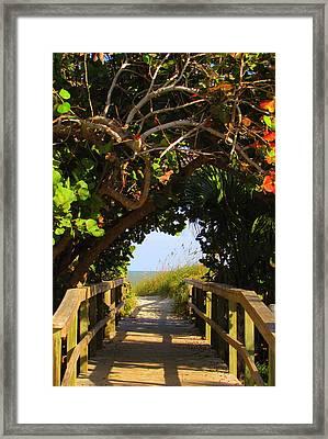 Ocean Walkway Framed Print