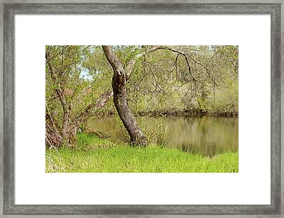Framed Print featuring the photograph Oceano Lagoon by Art Block Collections