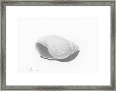 Ocean's Treasure Framed Print