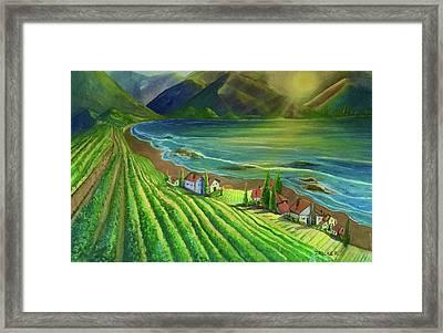 Sunset Vineyard  Framed Print