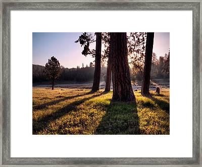 Ochoco Meadow Framed Print by Leland D Howard