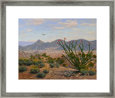 Ocotillo Paradise Framed Print