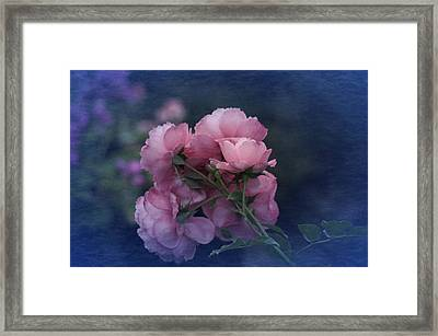 Framed Print featuring the photograph October 2016 Roses No. 2 by Richard Cummings
