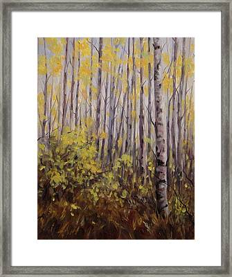 October Aspen Framed Print by Debra Mickelson