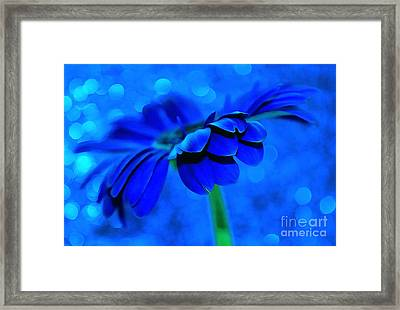 October Blues Framed Print by Krissy Katsimbras