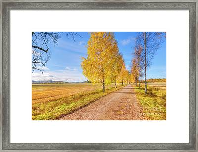 October Countryside 2 Framed Print