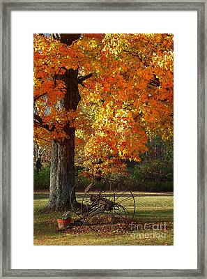 Framed Print featuring the drawing October Day by Diane E Berry