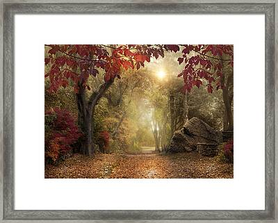 Framed Print featuring the photograph October Dreamer by Robin-Lee Vieira