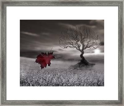 October Fades Framed Print