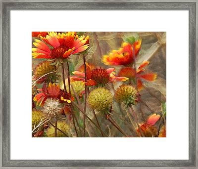 October Flowers 2 Framed Print by Ernie Echols