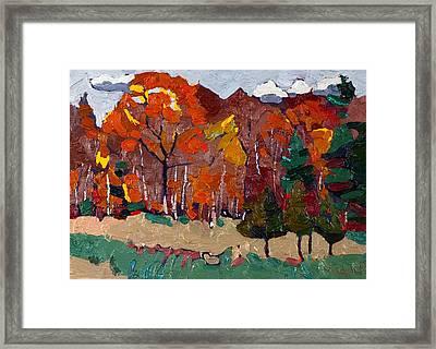 October Forest Framed Print