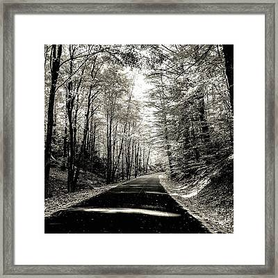 October Grayscale  Framed Print