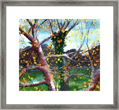 October In Leitrim Framed Print by Jean Davies