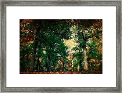 October In The Forest Textured 02 Framed Print