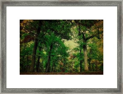October In The Forest Textured Framed Print