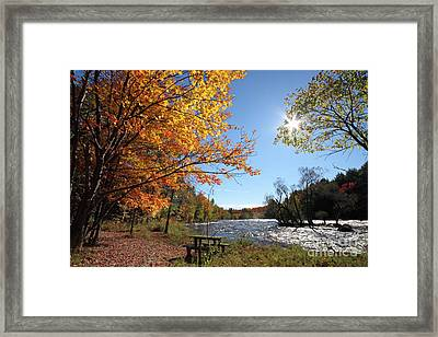 October Light Framed Print by Mircea Costina Photography