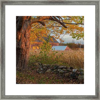Framed Print featuring the photograph October Morning 2016 Square by Bill Wakeley