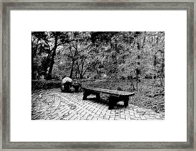 October On The Woodland Path Bw Framed Print