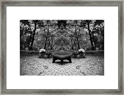October On The Woodland Path Pa Mirror Image Bw Framed Print