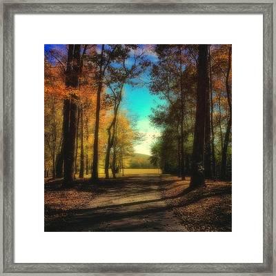 October Path Framed Print