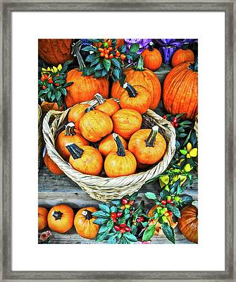 October Pumpkins Framed Print by Joan Reese