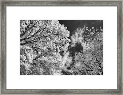 October Sky Ir Framed Print