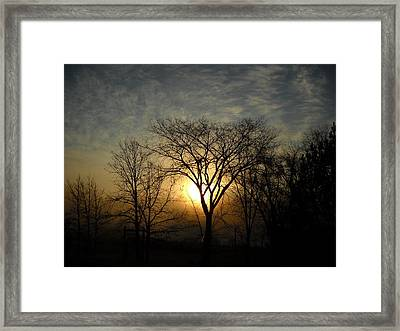 October Sunrise Behind Elm Tree Framed Print