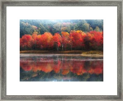 October Trees - Autumn  Framed Print
