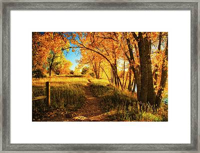 Framed Print featuring the photograph October's Light by John De Bord