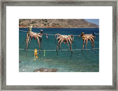 Octopodes Hanging Out Framed Print by Happy Home Artistry