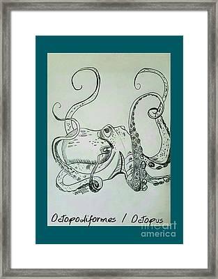 Octopodiformes Octopus Framed Print by Scott D Van Osdol