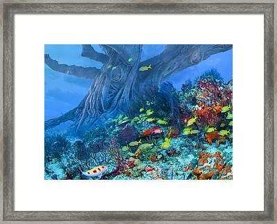 Octopus Tree Framed Print by Debra and Dave Vanderlaan
