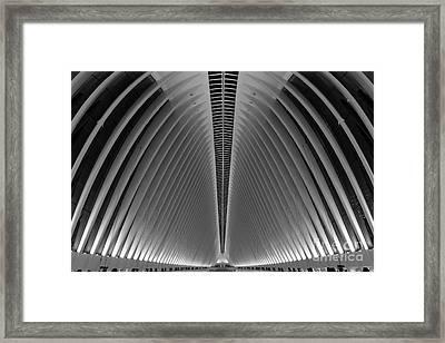 Oculus World Trade Center  Framed Print