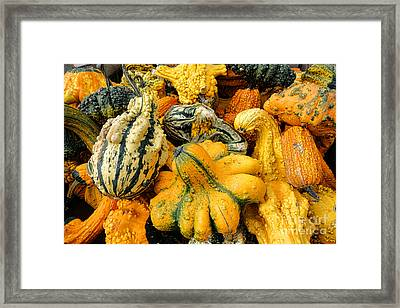 Odd Gourds Two Framed Print by Olivier Le Queinec