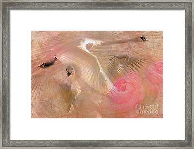 Ode To A Swan 2015 Framed Print