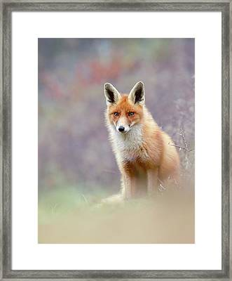 Ode To The Dunes Framed Print