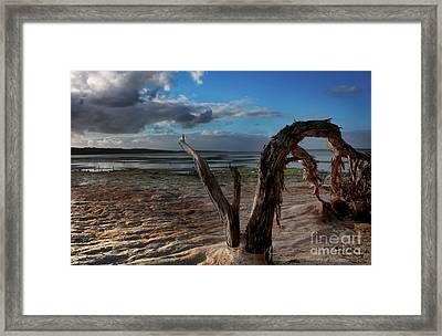 Ode To The Estuary Framed Print by Kym Clarke
