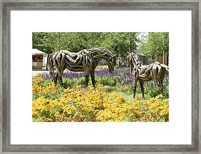 Odyssey The Horse And Hope The Colt Sculptures Made Of Driftwood Framed Print