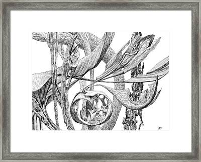 Of Another Plane Framed Print