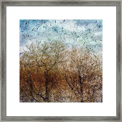 Of Birds And Trees 2 Framed Print