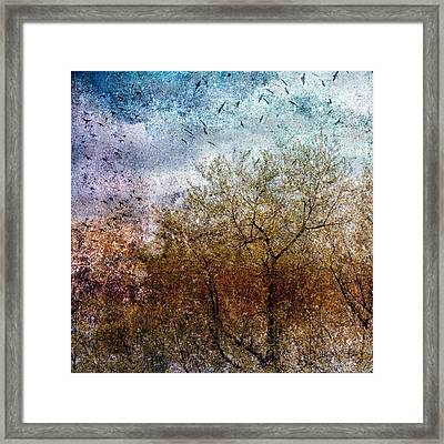 Of Birds And Trees  Framed Print
