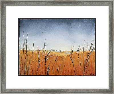 Of Grass And Seed Framed Print by Carolyn Doe