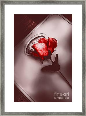 Of Love And Weighting Framed Print