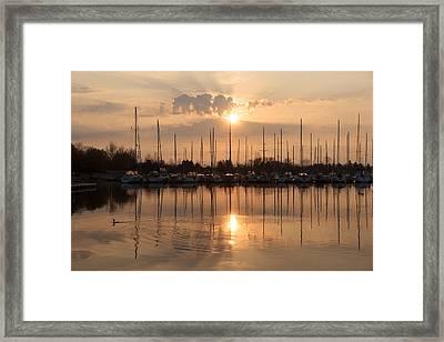 Of Yachts And Cormorants - A Golden Marina Morning Framed Print by Georgia Mizuleva