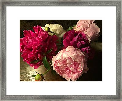 Off Center Peonies Framed Print by Gillis Cone