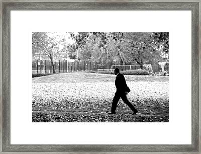 Off For Lunch Framed Print by Jez C Self