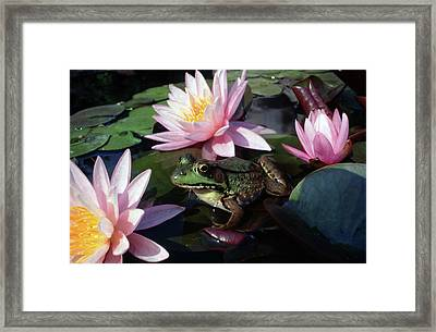 Off Of My Pad Framed Print